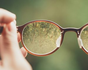 hand-holding-glasses-through-which-you-can-see-woods